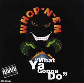 Whop-N-Em:  What Ya Gonna do - [Lead guitar on all songs]